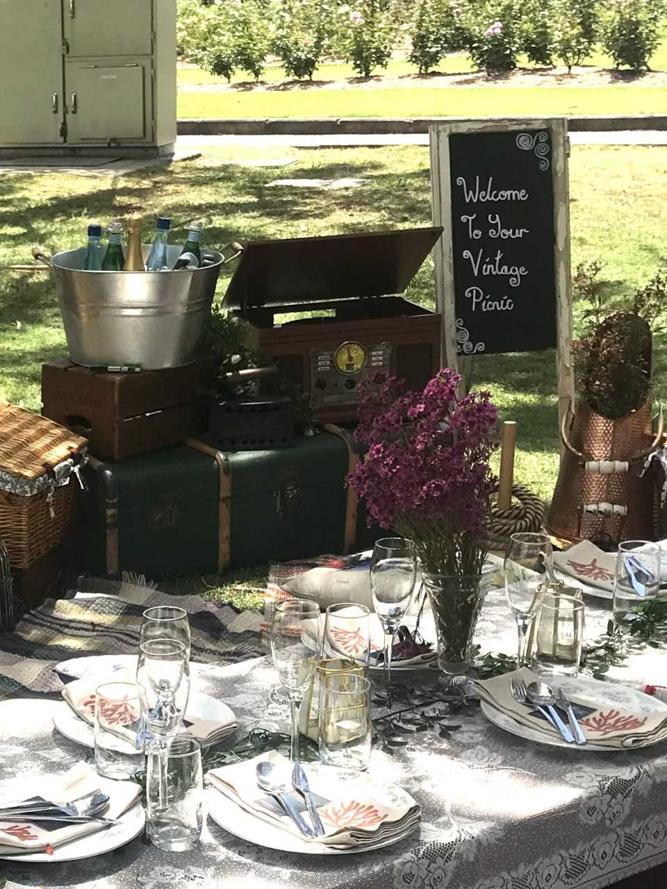 picnic spreads set up by the Vintage Picnic Company