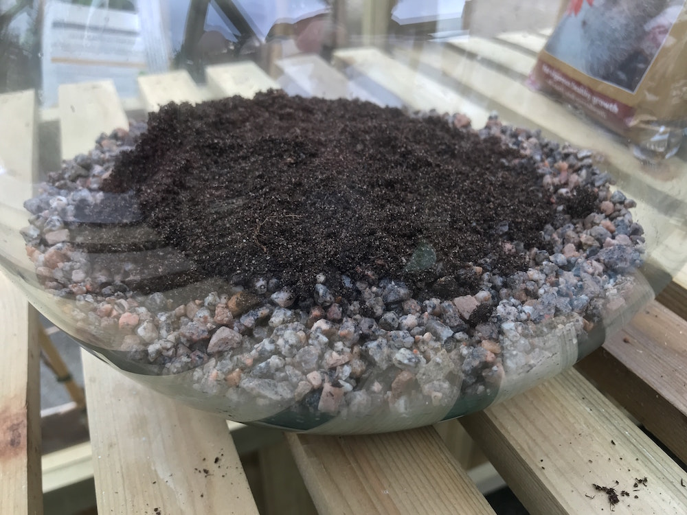 Create a circle of potting mix within the grit