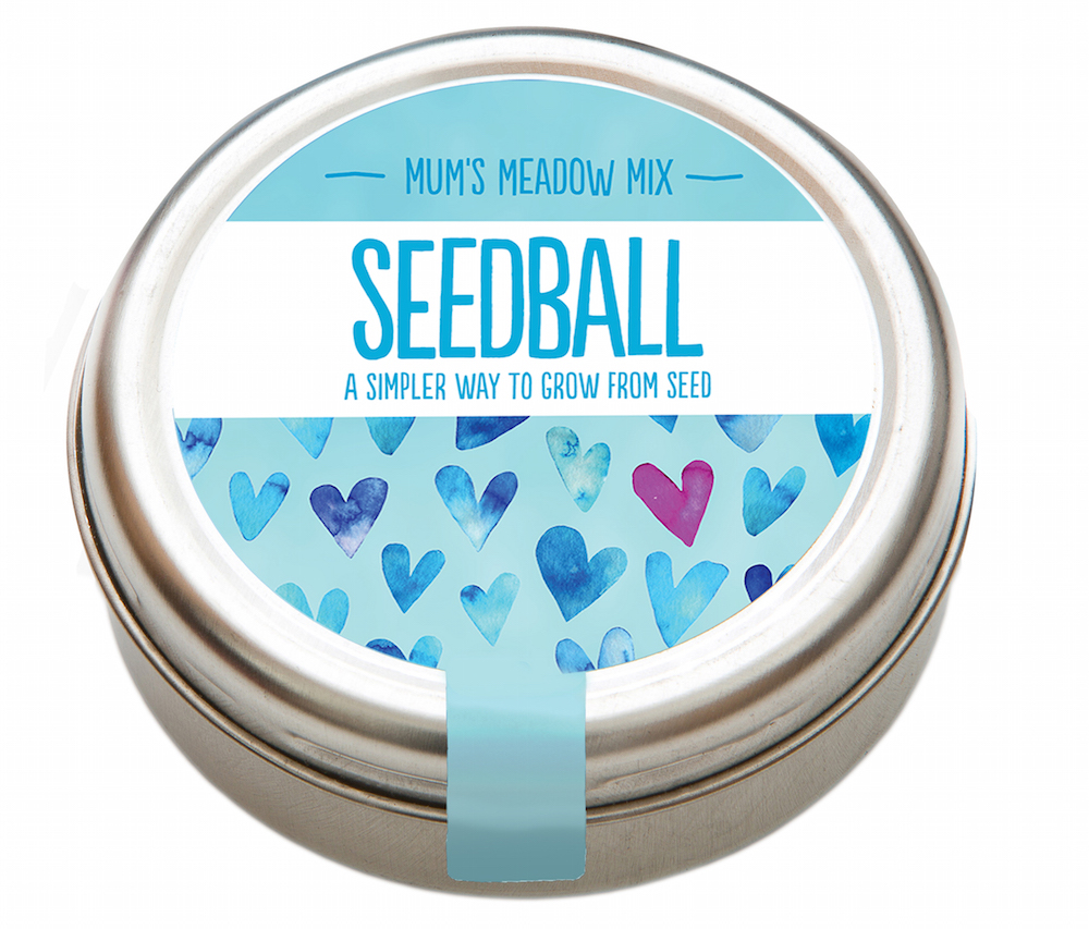 Seedball – Mum's Meadow Mix