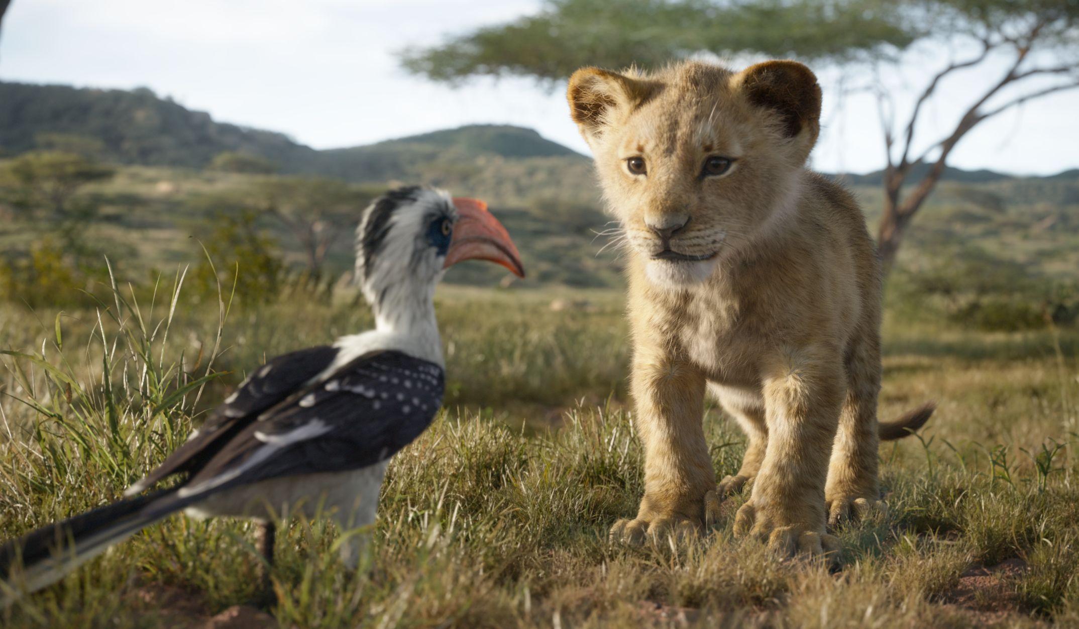 Scenes of Simba