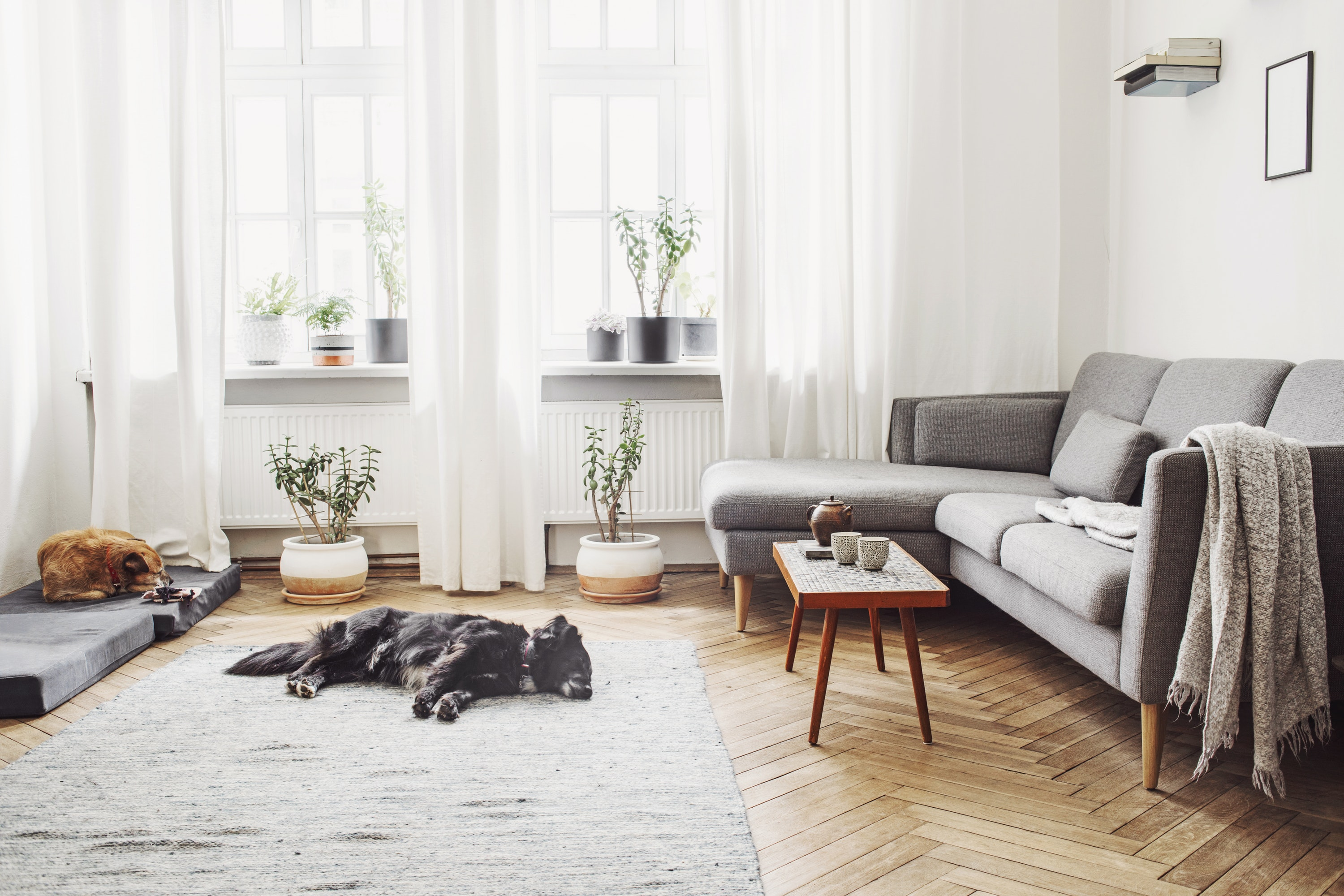 Who doesn't love a light and airy space?