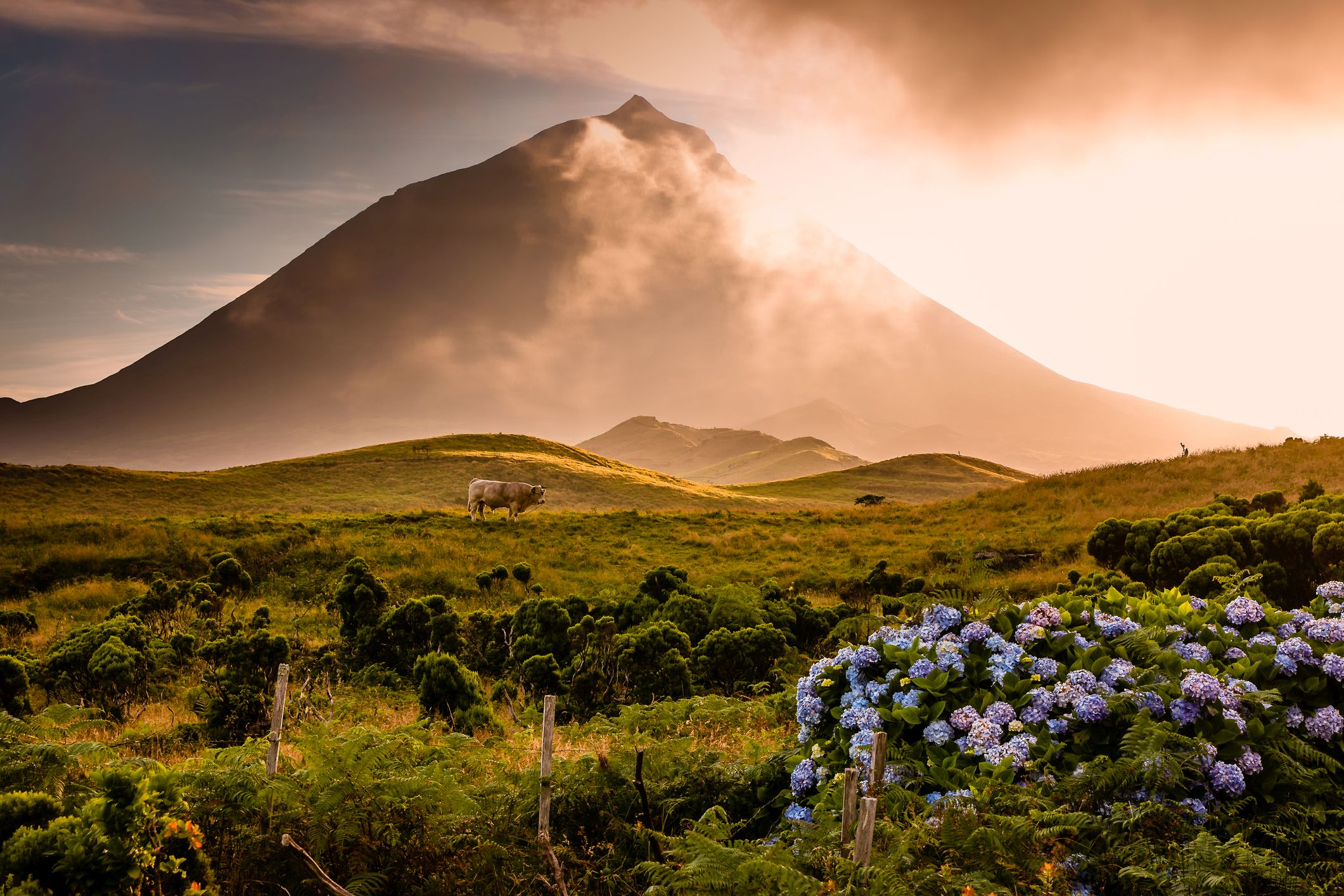 Pico, one of the islands in the Azores
