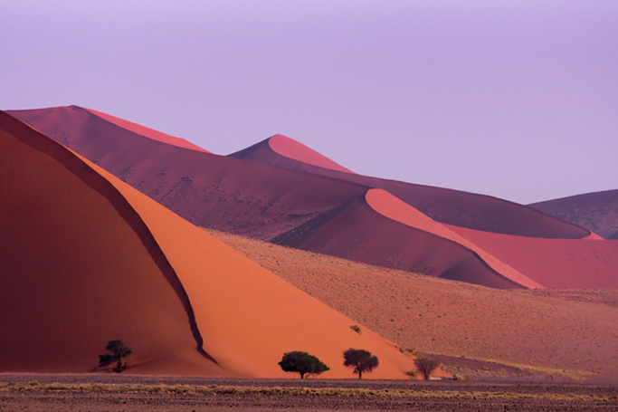 Royal honeymoon in Namibia