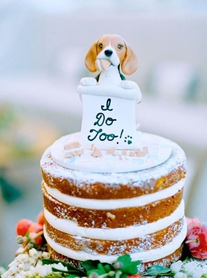 How to include your dog in your wedding 4