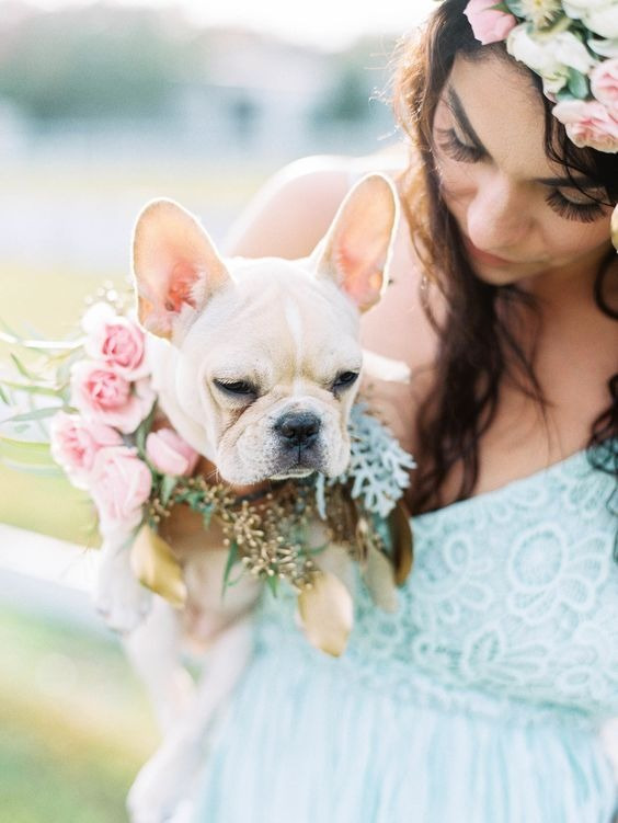How to include your dog in your wedding 3
