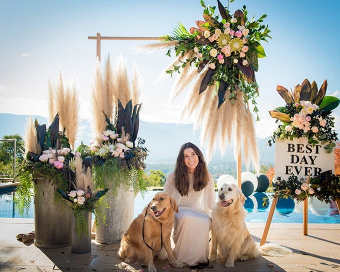 How to include your dog in your wedding 1