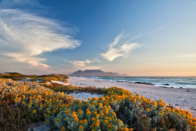 Popular Destinations For Solo Female Travellers: South Africa