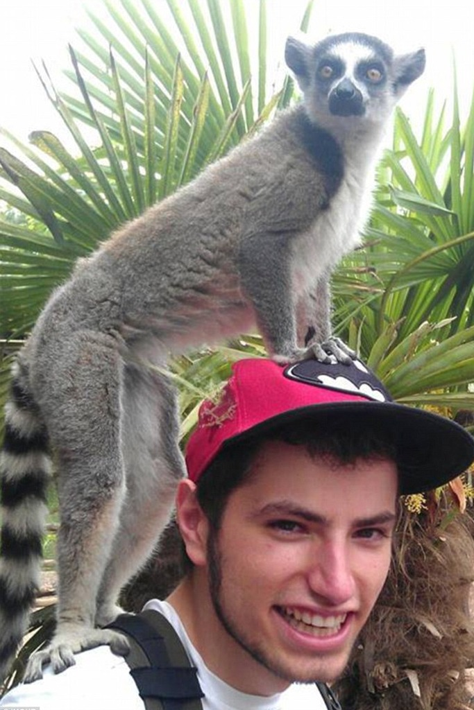 Hilarious Travel Fails Caught On Camera