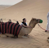 Bella Hadid and The Weeknd in Abu Dhabi 3
