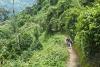 Nyungwe Forest, Rwanda