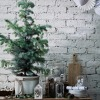 6. Pot-grown Tree