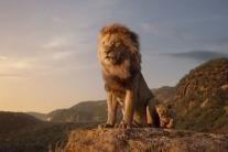 All Hail the Magical Kenyan Kingdom Where Lions Reign Supreme