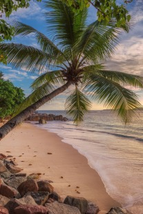 Thought Jamaica Was All About the Beach? Here's Why You're Wrong…