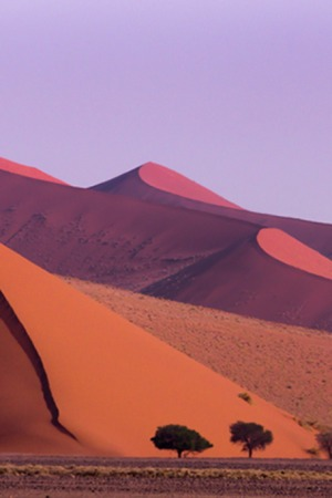 Royal honeymoon Namibia