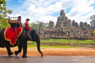 Animal experiences to avoid when travelling